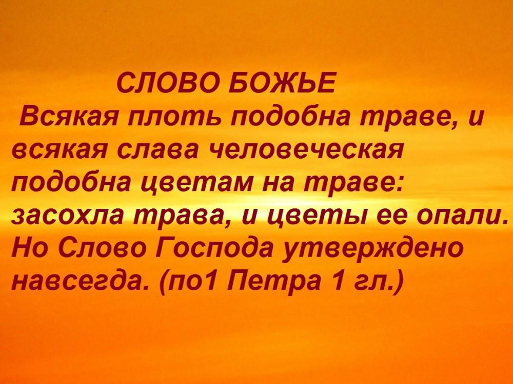 IMG_8230 - копия (2)