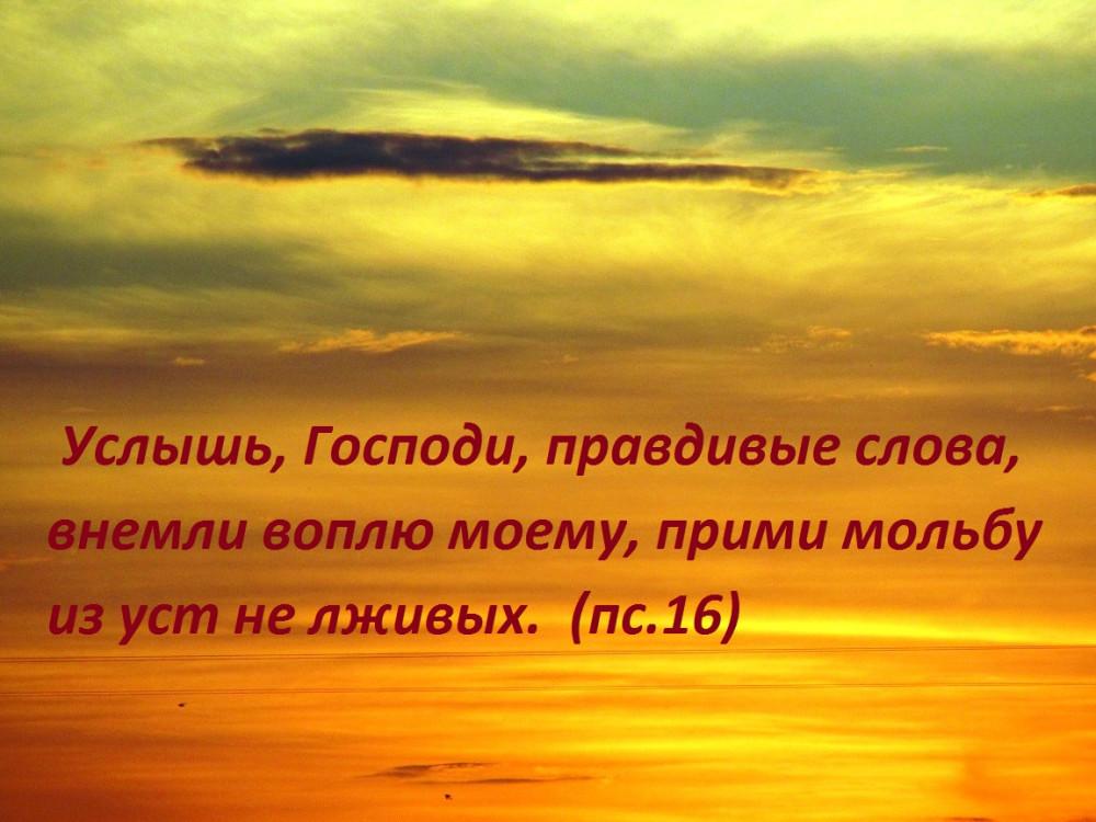 IMG_8663 - копия