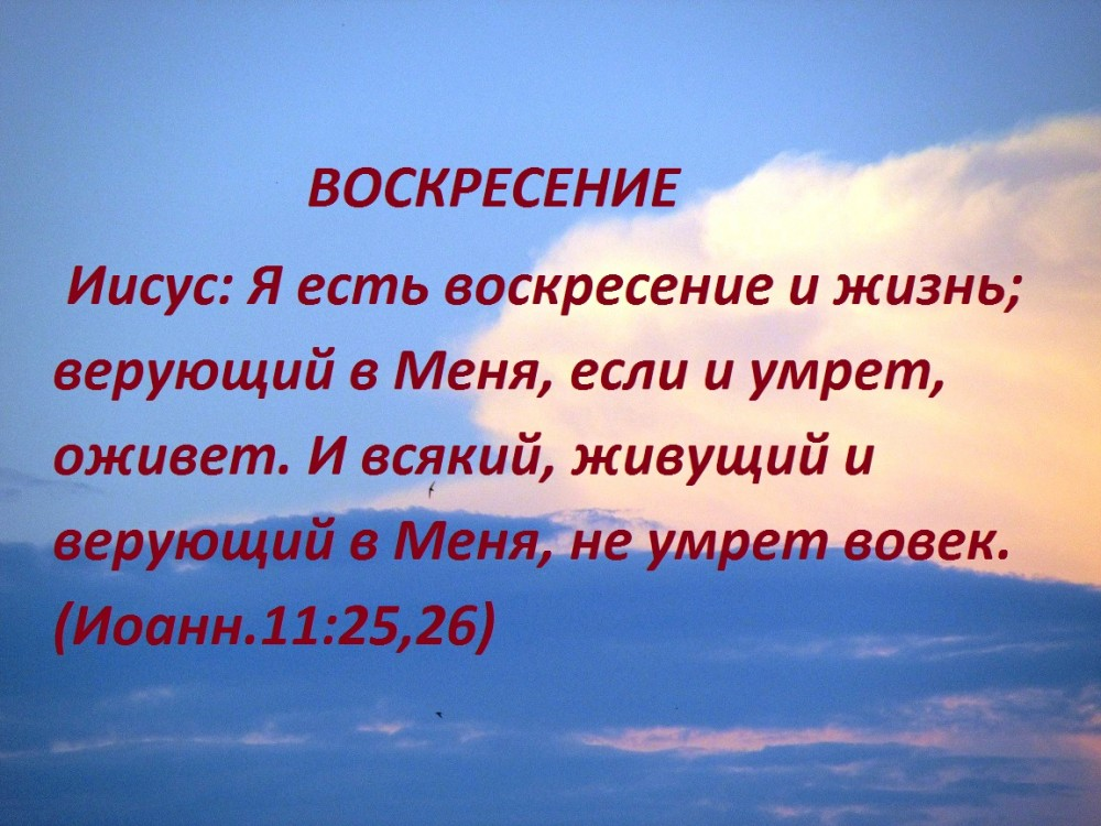 IMG_8707 - копия