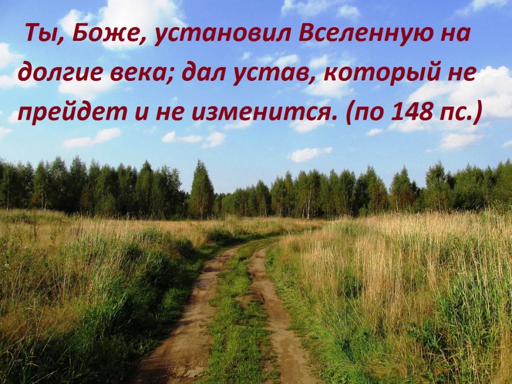 IMG_4076 - копия (2)