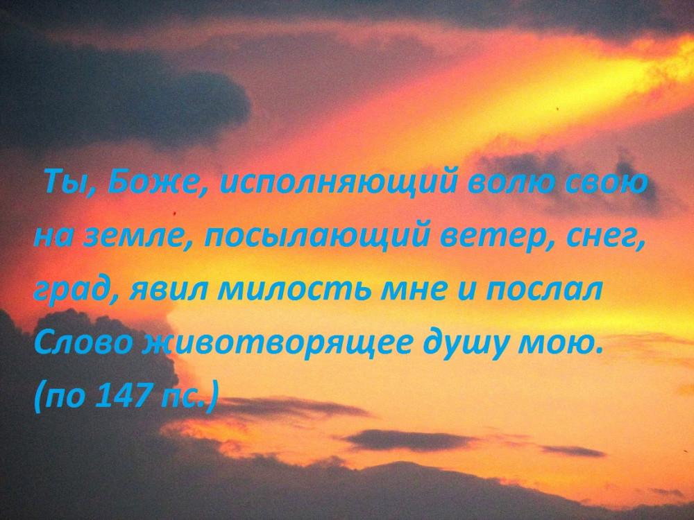 IMG_1706 - копия