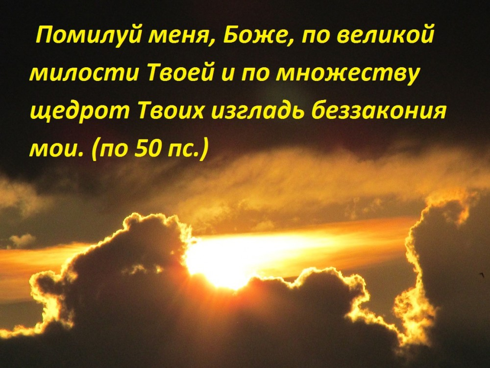 IMG_9337 - копия