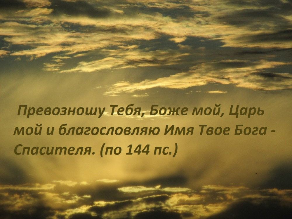 IMG_8109 - копия