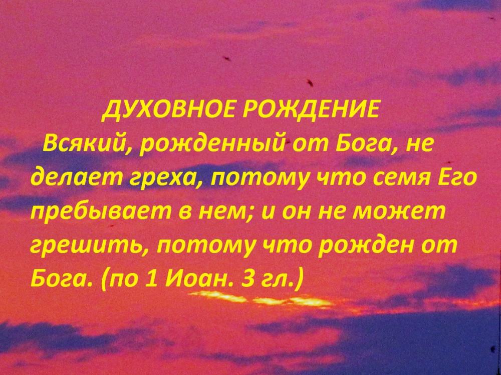 IMG_1658 - копия