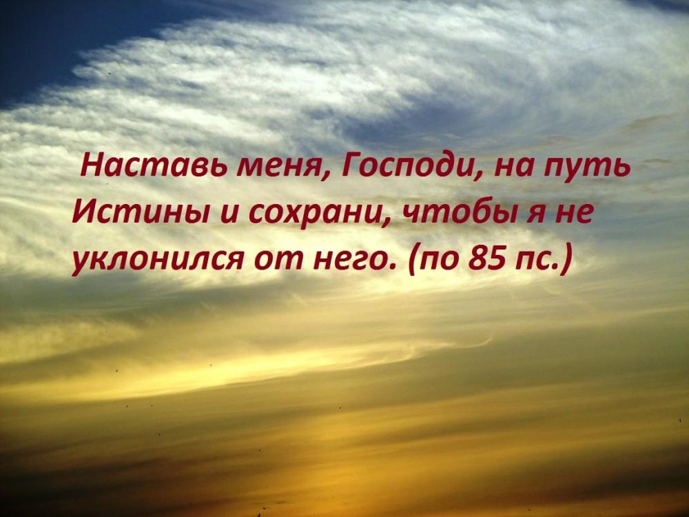 IMG_9684 - копия