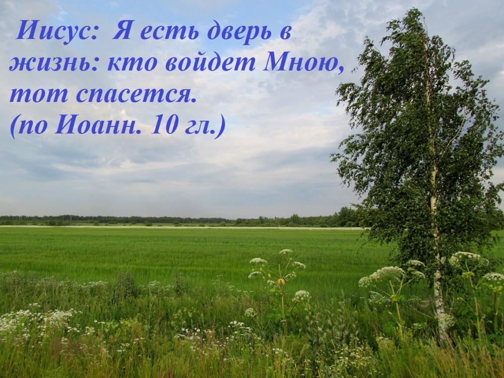IMG_8686 — копия1