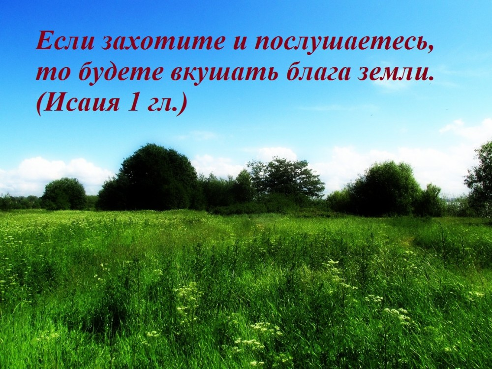 IMG_8368 — копия1