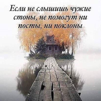 13697064_167053593712877_4649091954966701950_n