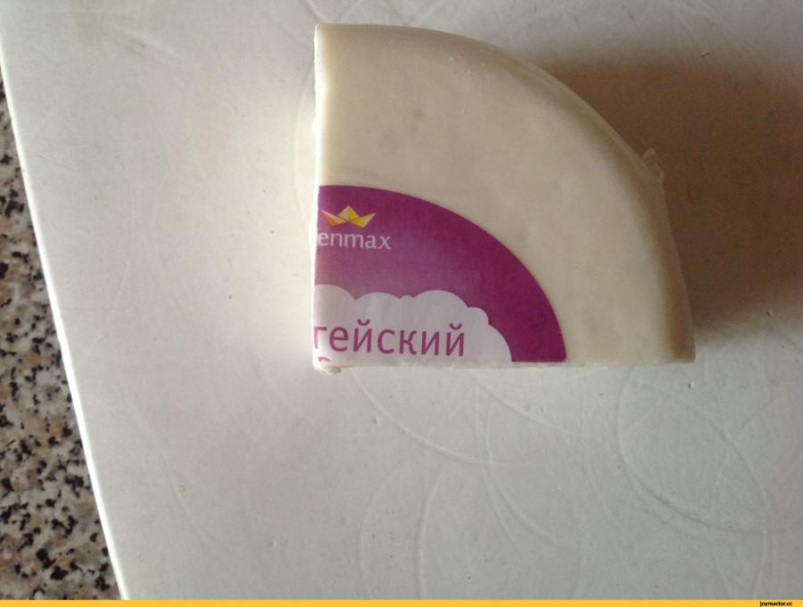 сыр-гейский-толерантность-песочница-1110340