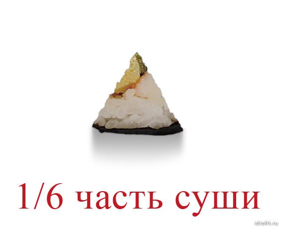 16_chast_sushi_600