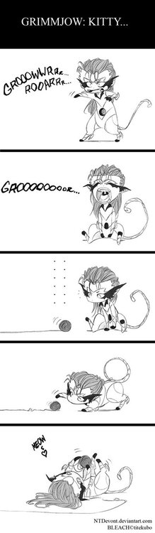 kitty grimmjow