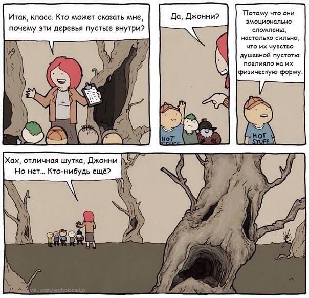 деревья сломлены