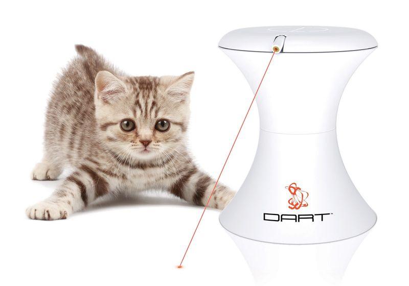 Cat Dart