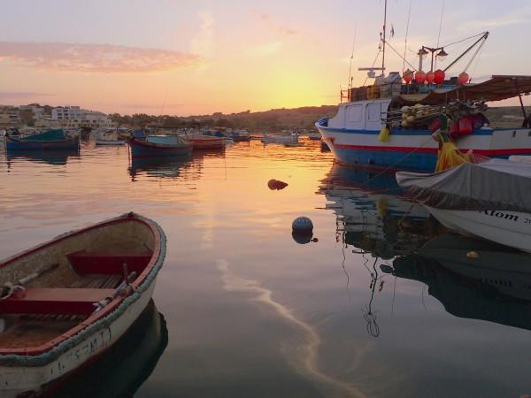 Мальтийский