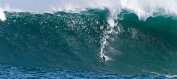 surfing-667x298