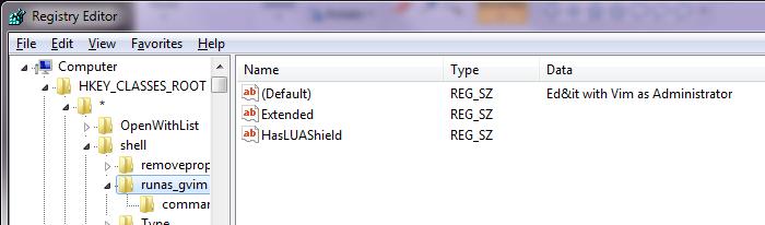 [Registry Key: HKCR\*\shell\runas_gvim]