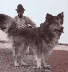 Earpie-Earp-Wyatt-dog-art-285x300