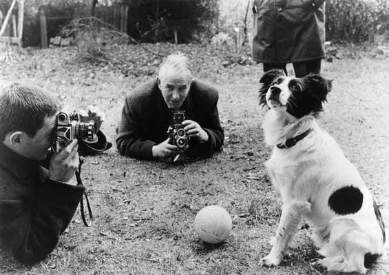 pickles-jules-rimet-trophy-south-london-football-world-cup-been-stolen-in-england-in-1966-famous-dog-ark-animal-centre