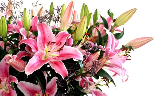 lovely-flowers.jpg