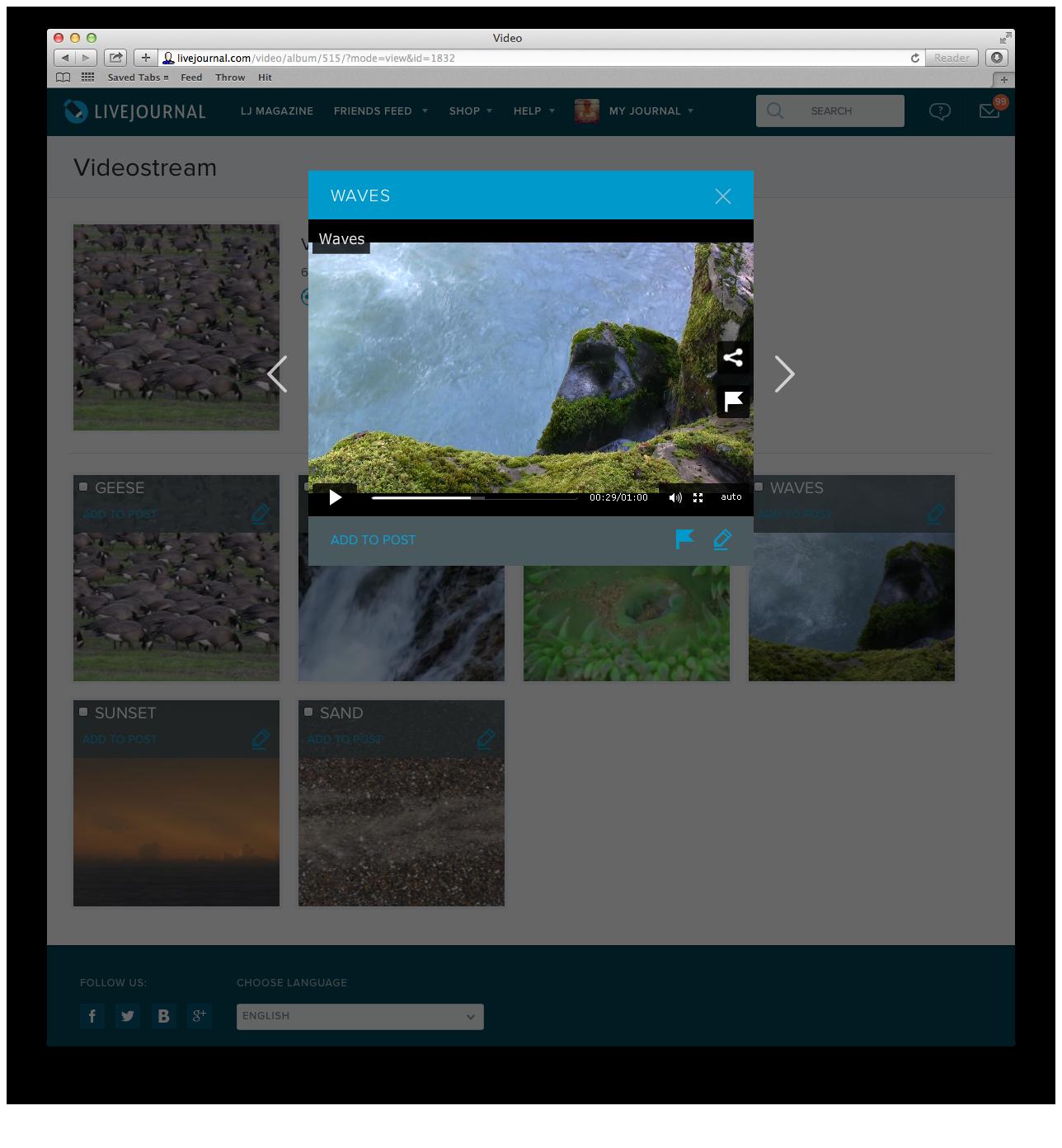 Videostream_Player