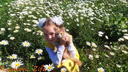 Эмилия ромашки Малыш 2.png