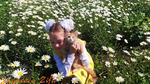 Эмилия ромашки Малыш 3.png