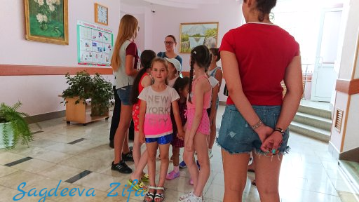 cборы по ХГ 2018, Эмилия, Ромашкино 26.png