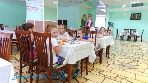 cборы по ХГ 2018, Эмилия 1.png