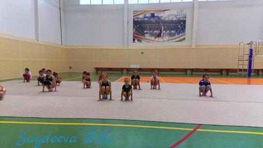 cборы по ХГ 2018, Эмилия, Ромашкино 10.png