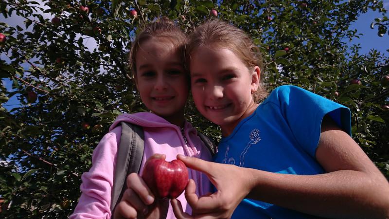 1 Эмилия и Дина 2.jpg