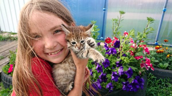 1 Эмилия соседский котёнок.jpg