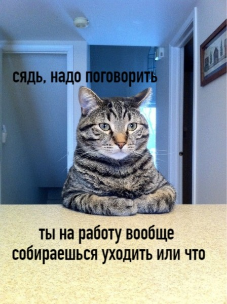 upld_36418.jpg