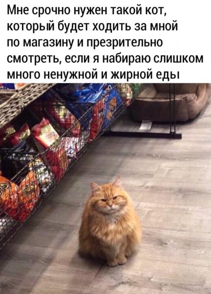 2020-04-29-mixnews-prikolnyh-kartinok-21-1.jpg