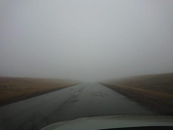 Туман, туманище... IMG-20201105-WA0009.jpg