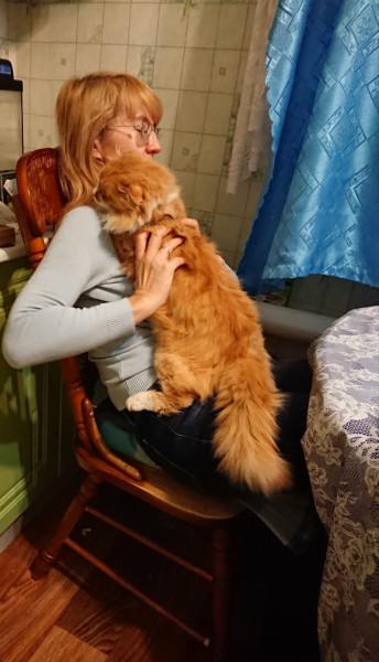 Когда приходишь домой поздно, а по тебе скучает котик IMG-20201119-WA0034.jpg