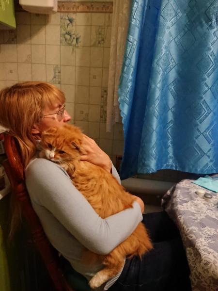 Когда приходишь домой поздно, а по тебе скучает котик IMG-20201119-WA0037.jpg