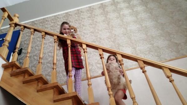 Как кот Малыш ездил по кошачьим делам к персидской кошечке Лизе :) IMG-20210207-WA0007.jpg