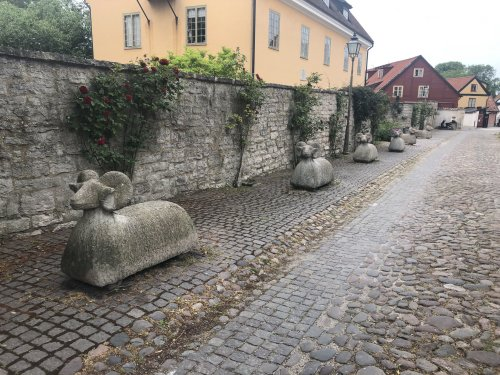 sheep_army.jpg