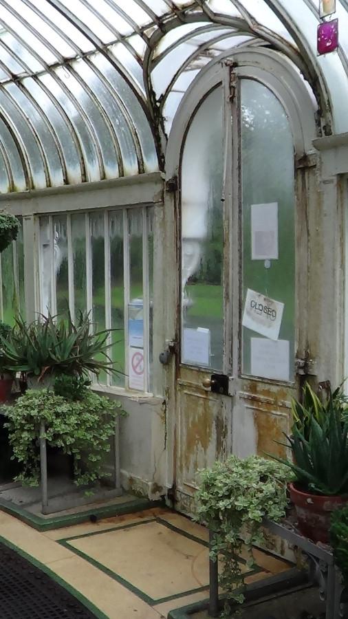 Inside the Botanic Gardens Glasshouse