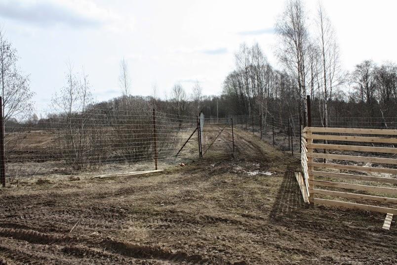 ферма оленей