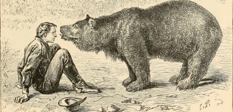 Иллюстрация к книге Томаса Нокса «По суше через Азию» (1886)