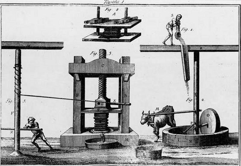 Как механизация погубила вкус оливкового масла