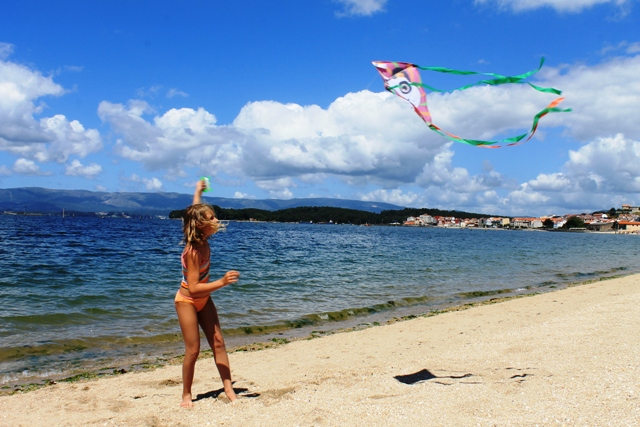 Картинки по запросу воздушный змей на пляже
