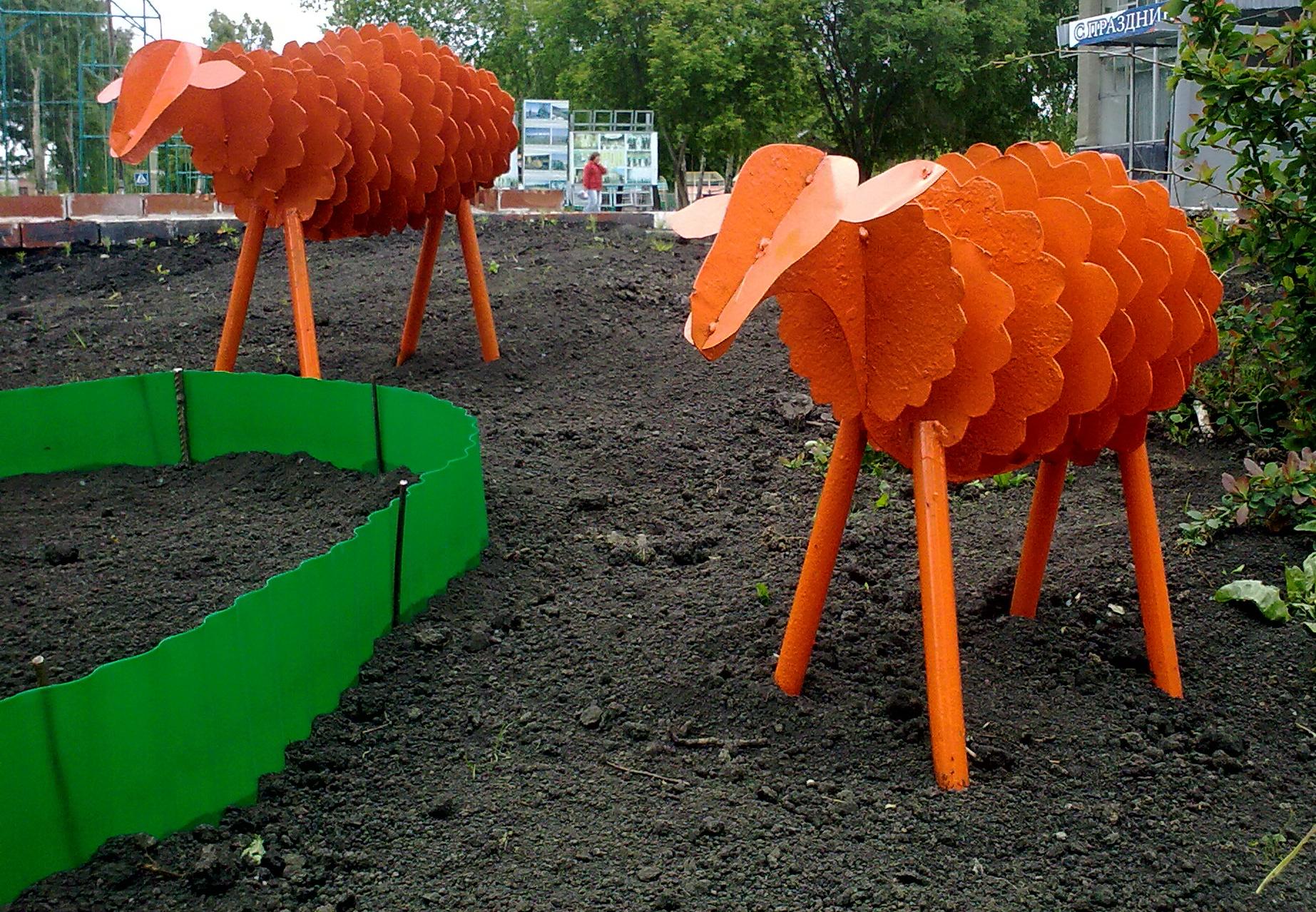Солнечные овечки