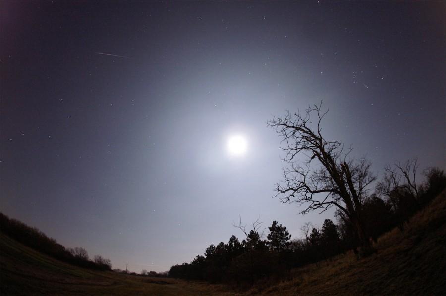 La Luna y una gemínida. Veszprem, Hungría. 14 de diciembre de 2011  Foto Monika Landy-Gyebnar