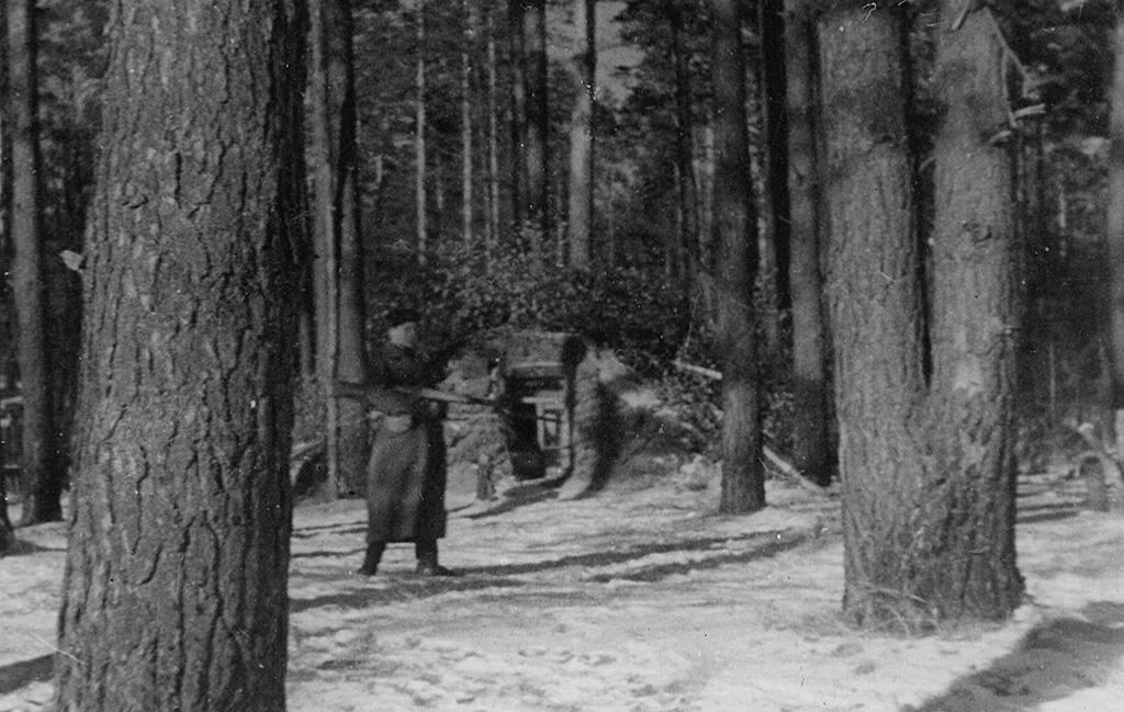 Партизаны зимой в лесу картинки