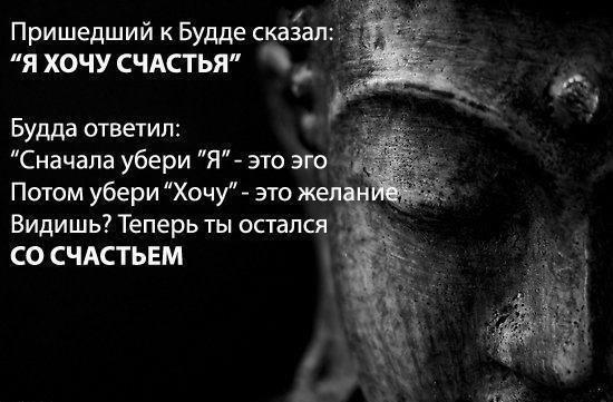 392813_447953488629019_1558850514_n