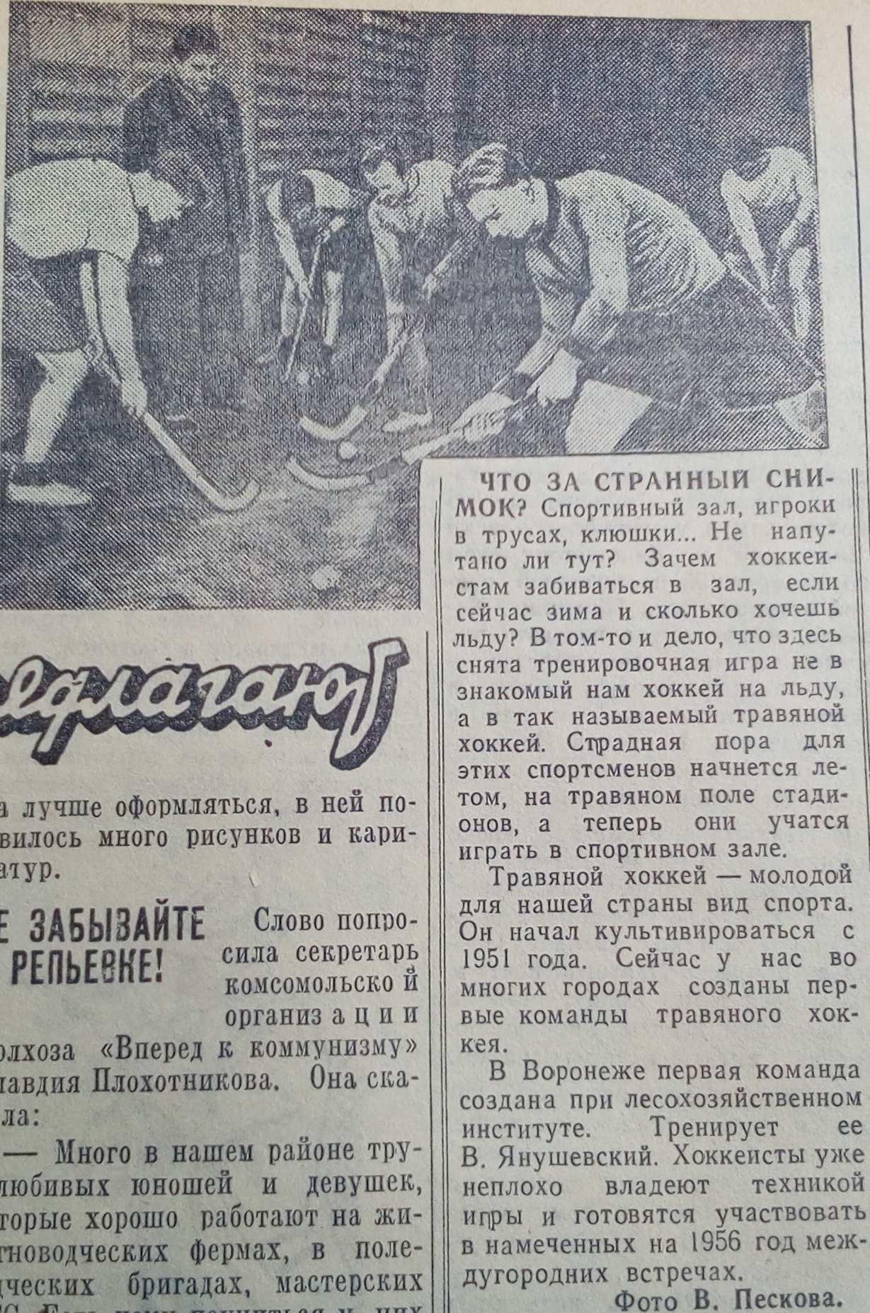 фхтр_1956_29.01_публикация Пескова