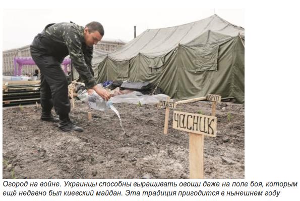 Как отразятся на стоимости продуктов потеря Крыма и падение гривны