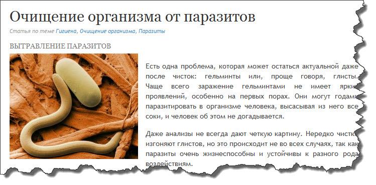 лечение от паразитов шариками полынью горькой
